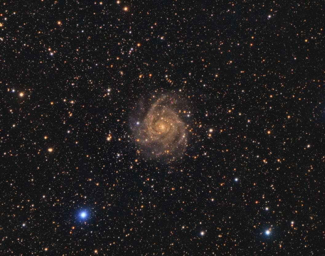 IC 342 - The Hidden Galaxy